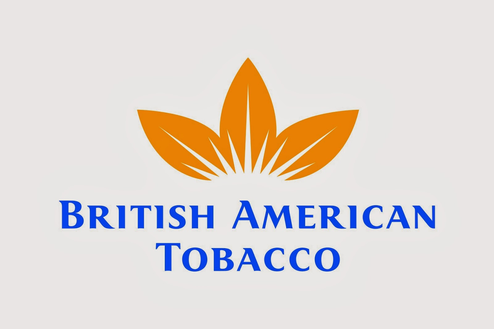 Engineering Support Services Manager at British American Tobacco