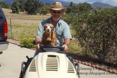 Jimmy driving Cub Cadet tractor with his fourteen year old Dachshund sitting up with paws on the steering wheel