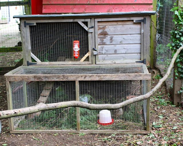 quail house
