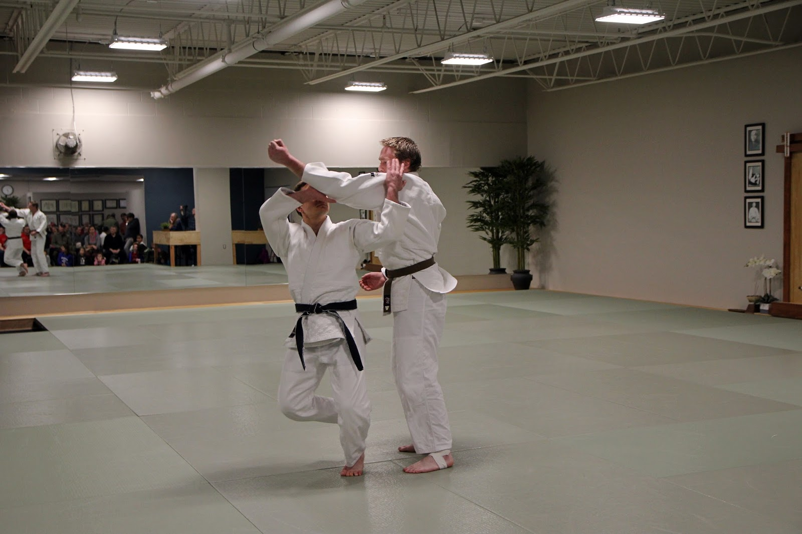 JAPANESE MARTIAL ARTS CENTER: The Magic of Persistence at JMAC