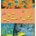 Free Download Urdu Novel Phool Girte Hain By A Hameed