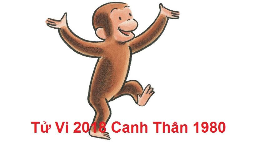 Tu vi Canh Than 2018