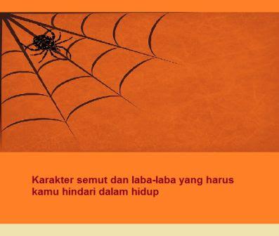 Karakter semut dan laba-laba yang harus kamu hindari dalam hidup
