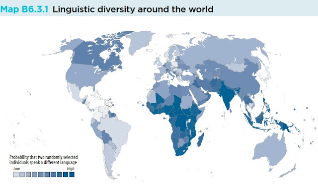 World linguistic diversity map