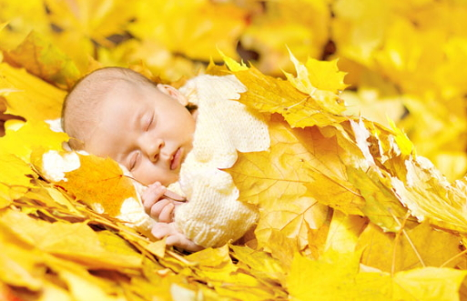 november born babies qualities