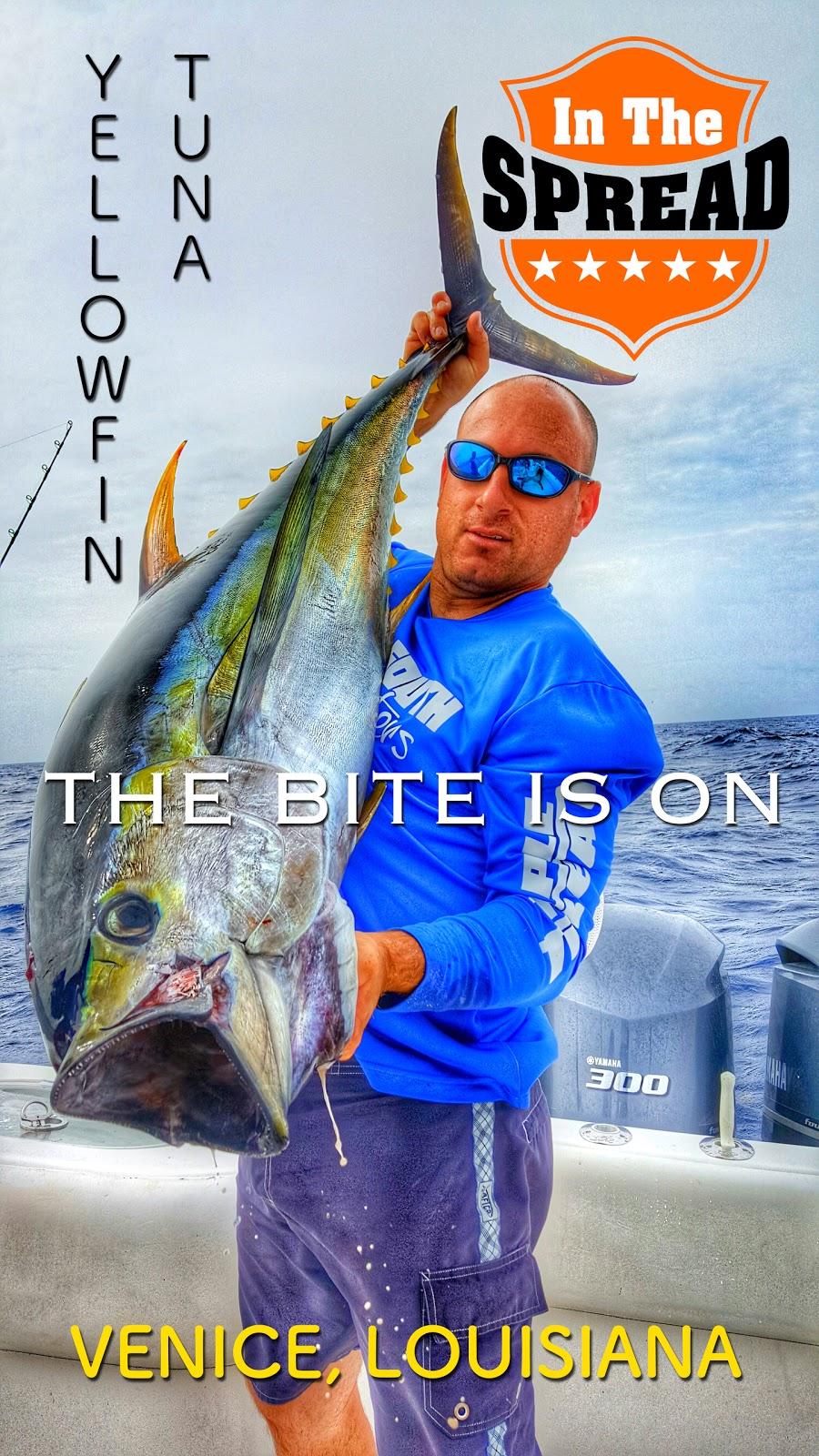 how to catch yellowfin tuna in louisiana