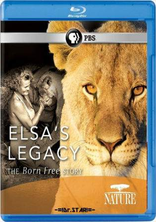 Born Free 1966 BluRay Hindi 300Mb Dual Audio 480p Watch Online Full Movie Download bolly4u