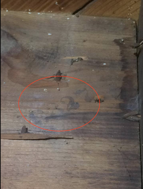 marked lumber in a sears house