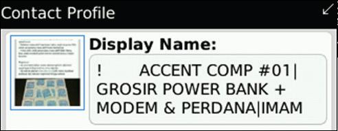 Display Name yang menjual