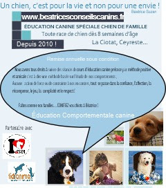 Classes Chiot la Ciotat -Ceyreste