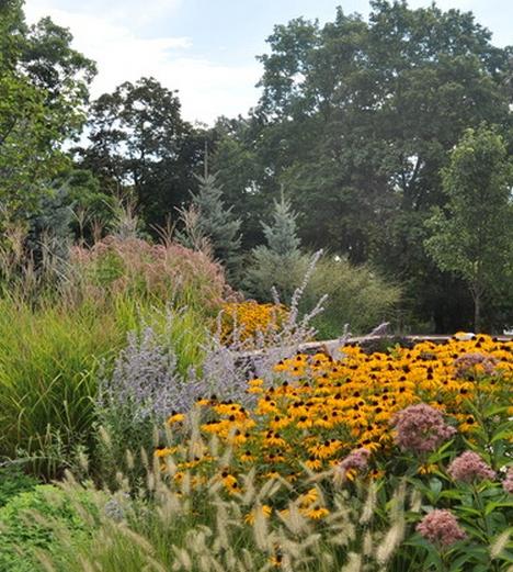 Gradina mare proiect gradina firma amenajare curte cu flori perene gradina naturalista arhitect peisagist proiect gradina idei amenjaare curte cu flori