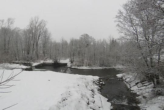 Rzeka Łososina i ujście potoku Chyszówka.