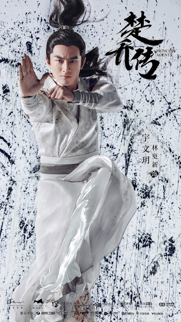 Princess Agents Lin Genxin