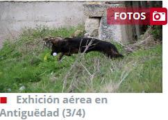 http://www.elnortedecastilla.es/fotos/palencia/201705/14/exhicion-aerea-antigedad-30366623631-mm.html?edition=