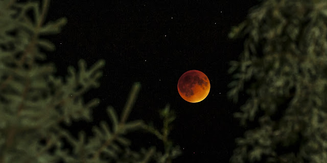 The Sept. 27 supermoon total lunar eclipse seen over Menominee, Michigan. Credit: Duane Clausen