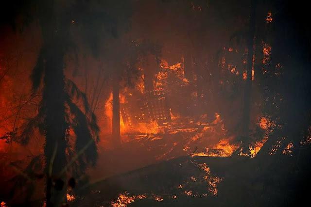 Pasca Larang Adzan, Israel Alami Kebakaran Super Hebat