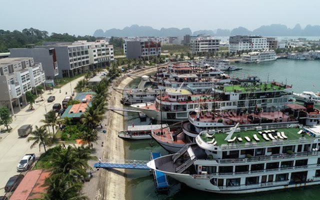 Cảng quốc tế Tuần Châu