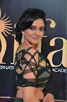 Vimala Raman in Designer Choli and Saree at IIFA Utsavam Awards 2017  Day 2    HD Exclusive Pics 09.JPG