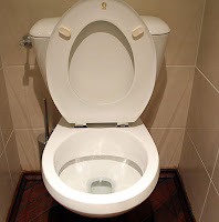 Keep the toilet seat up America!