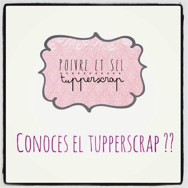 http://poivre-etsel.blogspot.com.es/2013/12/tupperscrap.html