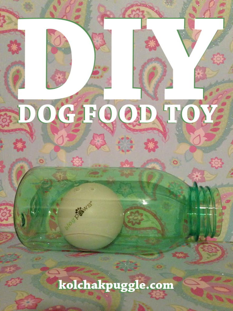 Bark city doggy daycare diy enrichment games for your dog for Easy diy toys