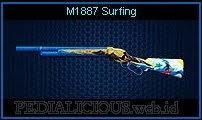 M1887 Surfing