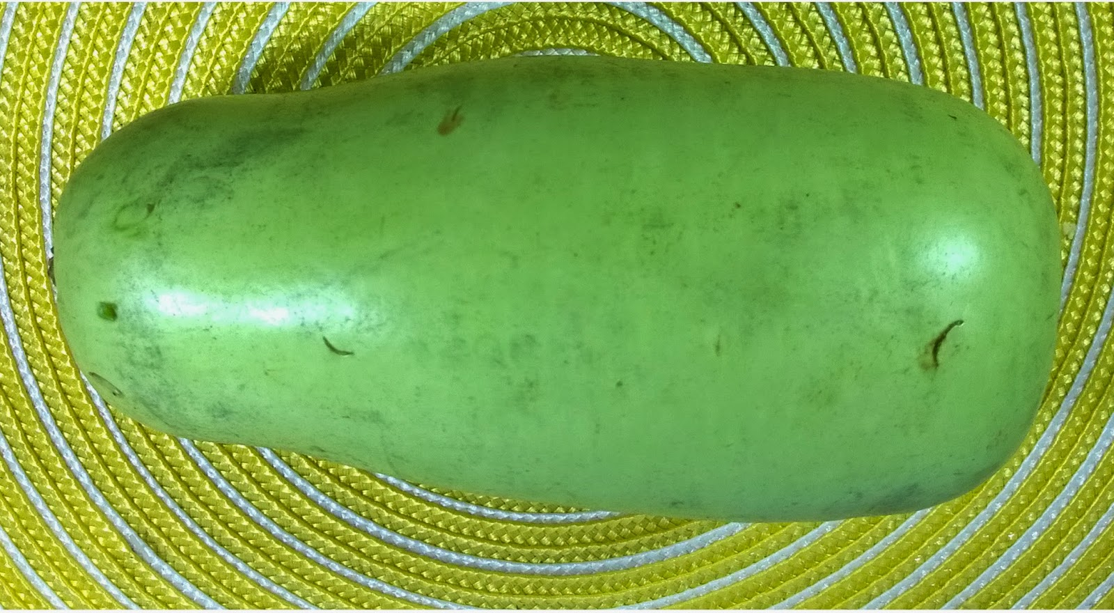 bottle gourd how to say