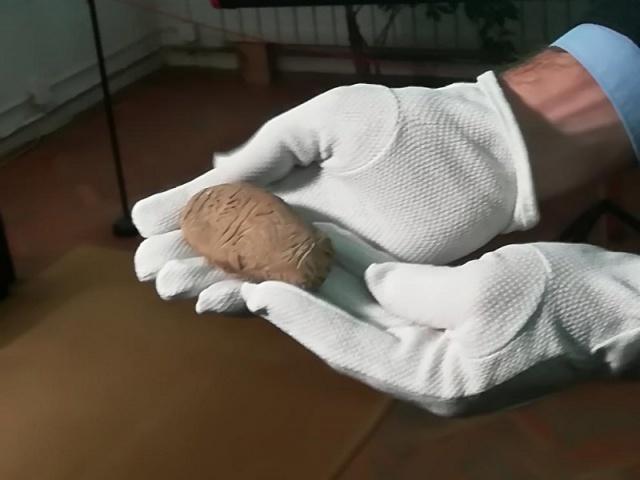 7,000-year-old inscribed clay tablet found near Bulgaria's Nova Zagora