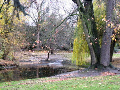 Autumnal scene with trees and pond