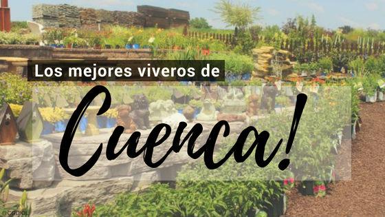 Listado de los Mejores Viveros de la Provincia de Cuenca, España, donde puedes comprar plantas para tus proyectos