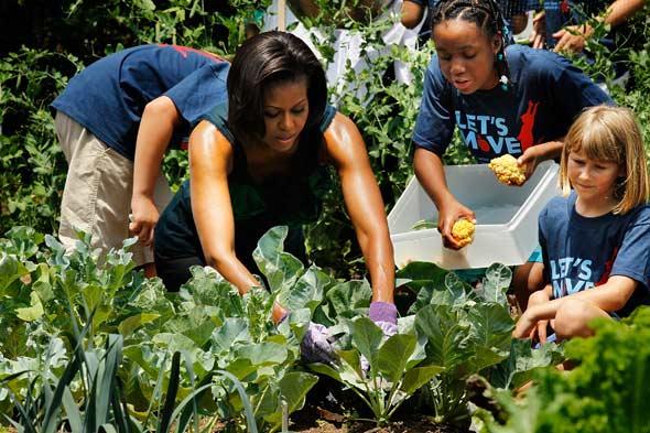 Menggalakkan Eco Farming Kecil-kecilan
