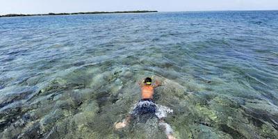 Ini Tips Latihan Snorkeling untuk Pemula