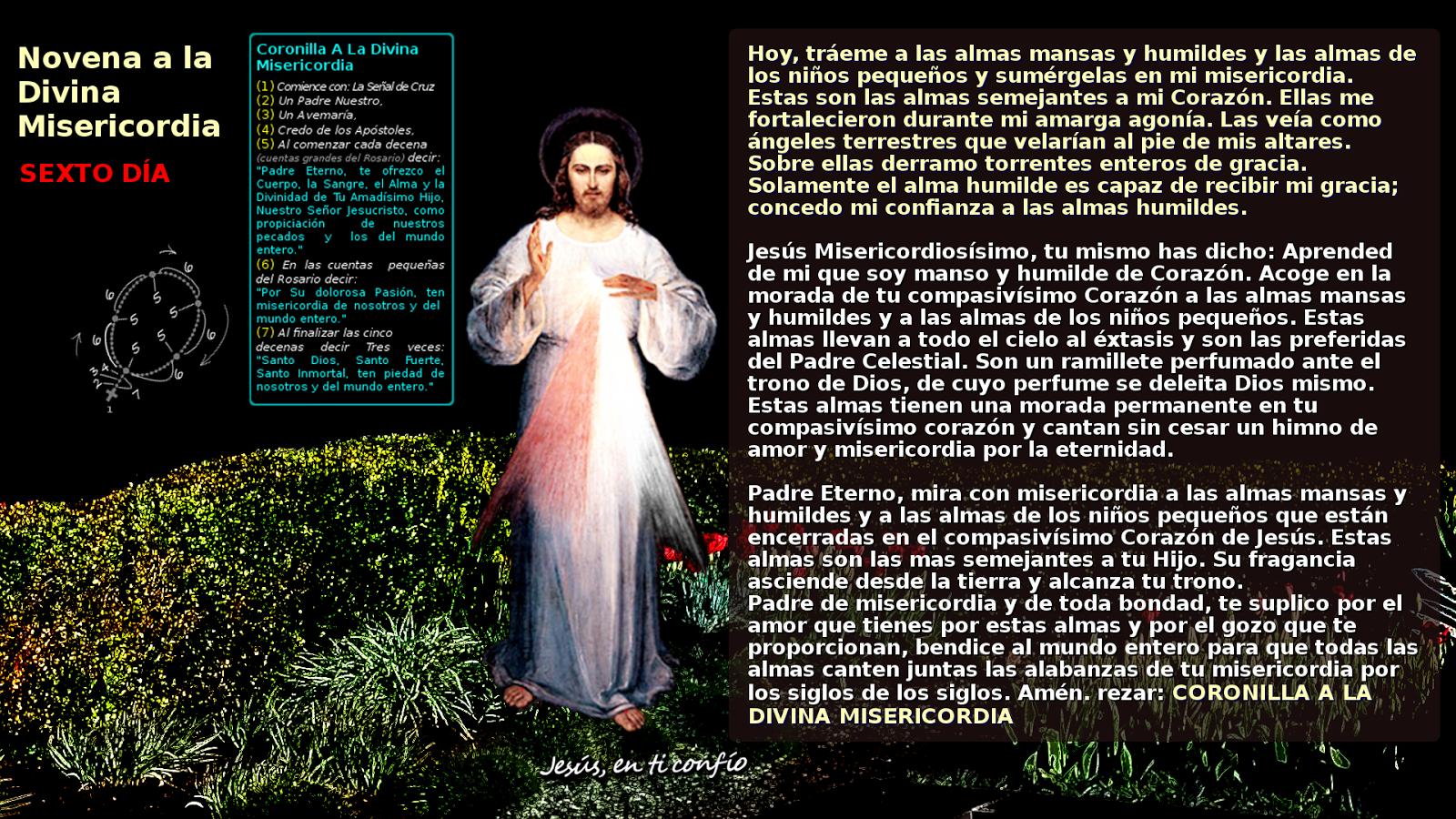 sexto dia de la novena divina misericordia en foto de jesus misericordioso