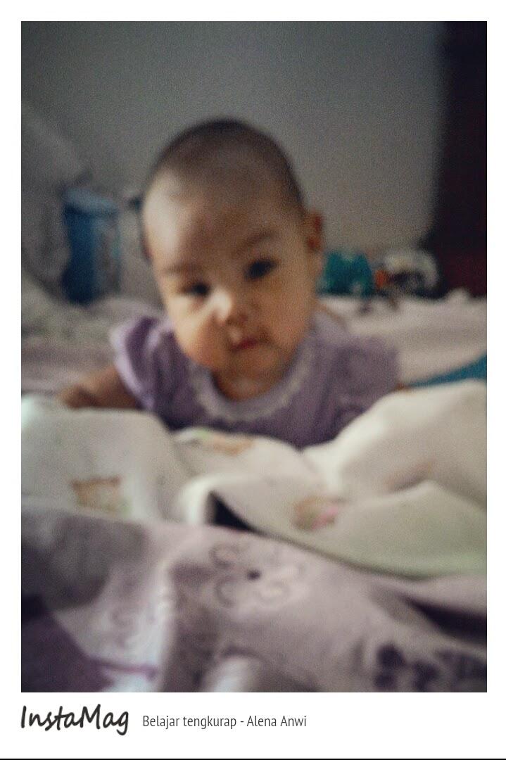 tahap perkembangan bayi 0-3bulan