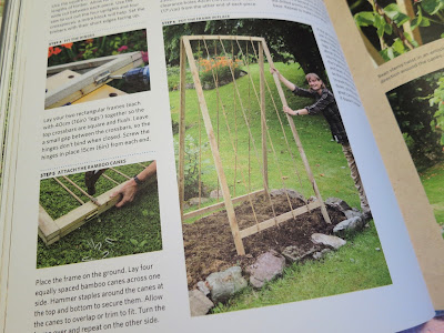 Picture of an hinged A-frame for growing runner beans up. Build a Better Garden by Joyce and Ben Russell.