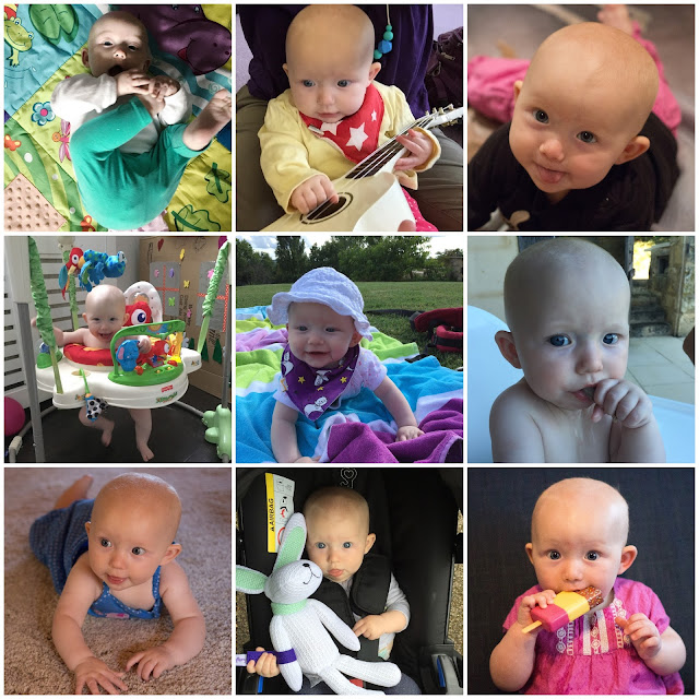 9 pictures of a baby girl between 5 and 6 months of age