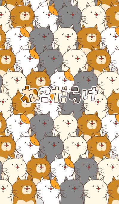 cat full