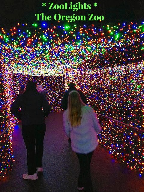 Zoo Lights Oregon