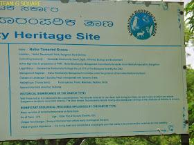 Nallur Biodiversity Heritage Site