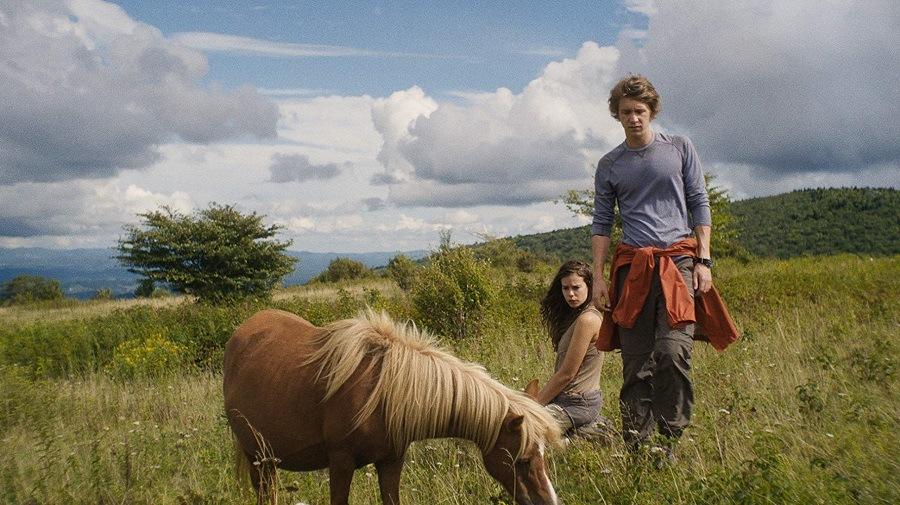 Vida Na Natureza 2019 Filme 1080p 720p Full HD HD WEB-DL completo Torrent
