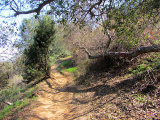 On Bee Rock Trail from Old Zoo Park