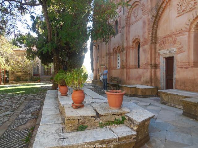 donice z kwiatami, wysoka akacja na podwórzu klasztoru Nea Moni Chios Grecja