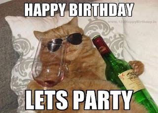happy birthday cat funny images