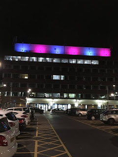 Public buildings illuminated to raise pregnancy and infant loss awareness