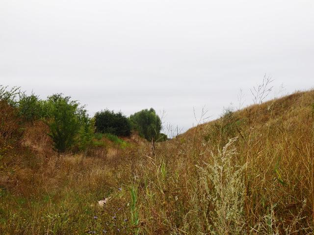 Nocleg na dziko na Ukrainie, w wysokich trawach, koło niedokończonego wiaduktu