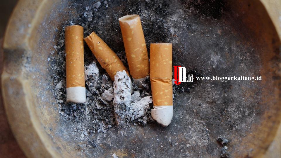 10 Poin Deklarasi Penolakan Sponsor dan Iklan Rokok, Angkatan Muda Muhammadiyah