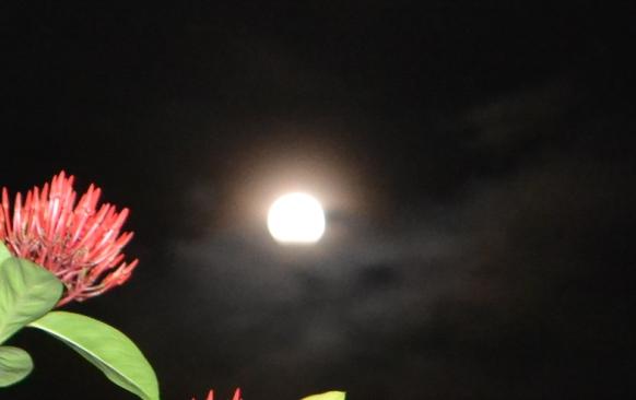 Malam Ini, Gerhana Bulan Total