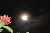 Malam Ini Gerhana Bulan Total