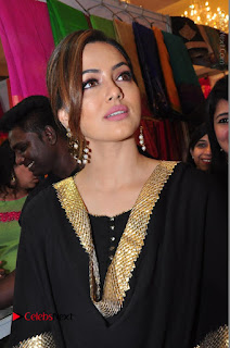 Bollywood Actress Sana Khan Launches Aakrithi Exibition  0117.JPG