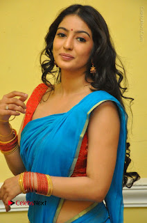 Telugu Actress Vaibhavi Stills in Blue Saree at Www.Meena Bazaar Movie Opening  0012.JPG